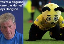 Harry the Hornet you're a disgrace says Roy Hodgson