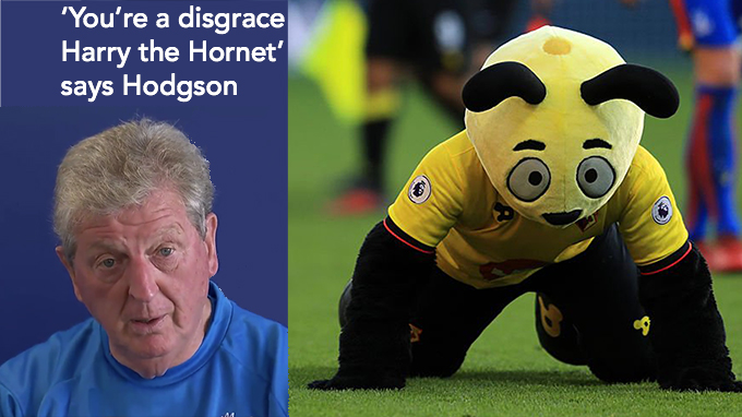 Harry the Hornet you're a disgrace says Roy Hodgson